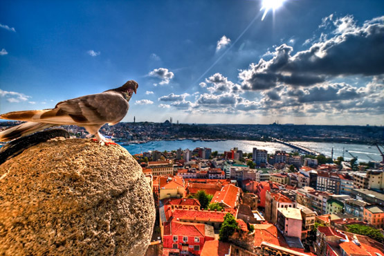 05 Kus Bakisi Istanbul in Extremely Amazing Colorful Nature Pictures