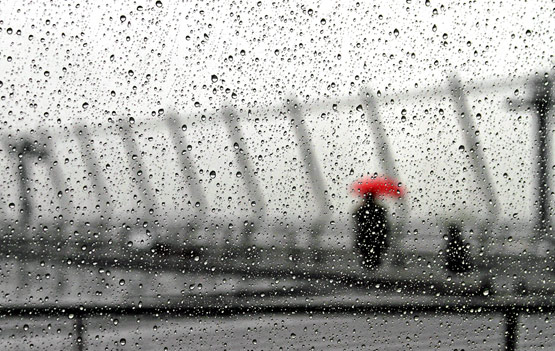 rainphotos01 in 30 (Really) Beautiful Examples of Rain Photography