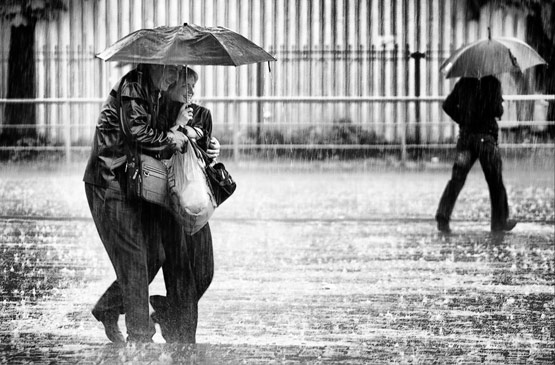 rainphotos02 in 35 (Really) Beautiful Examples of Rain Photography