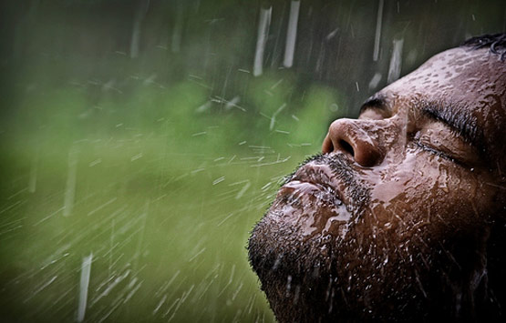 rainphotos03 in 35 (Really) Beautiful Examples of Rain Photography