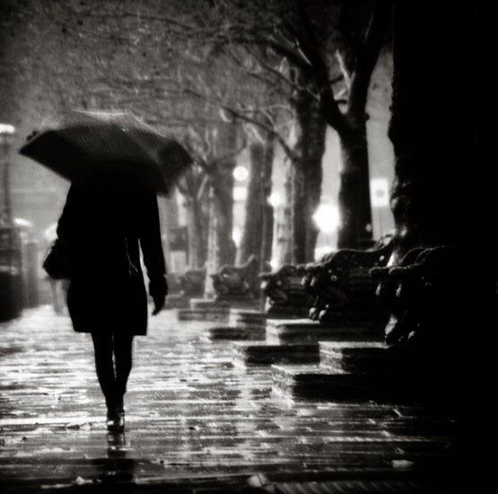 rainphotos28 in 35 (Really) Beautiful Examples of Rain Photography