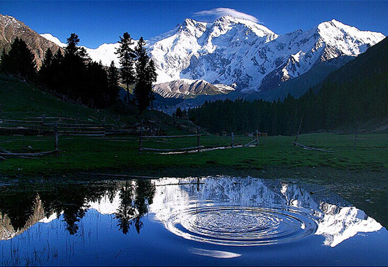 13 Pakistan Fairy Meadows Circles of Life in 15 Beautiful and Amazing Pictures of Pakistan