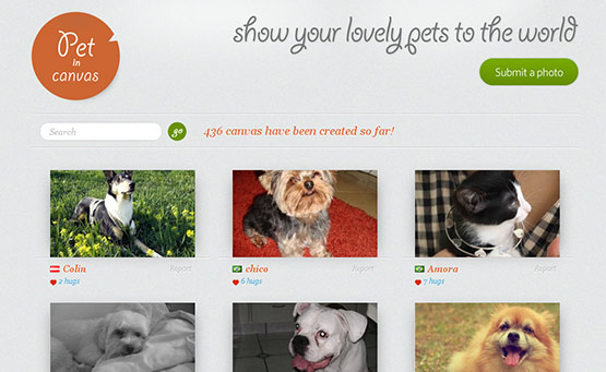 Pet in Canvas, Latest Trend of Logos in Web Design