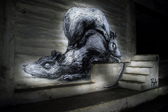 1716 in Graffiti Street Art of Animals