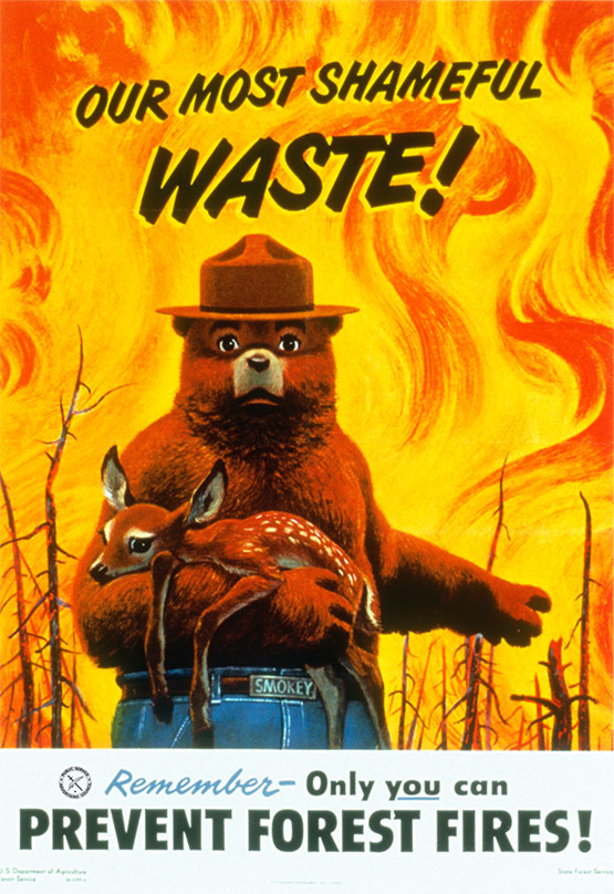 Smokey the Bear, Shameful Waste