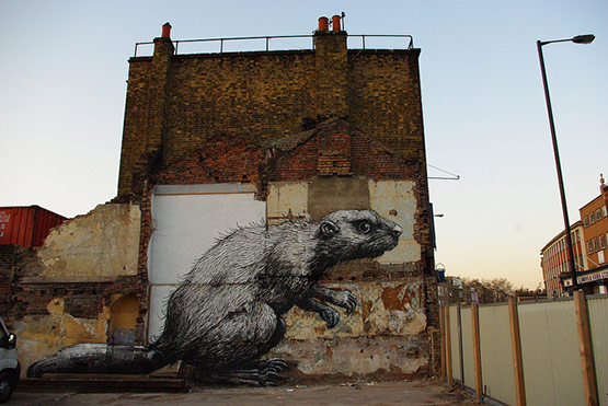 1736 in Graffiti Street Art of Animals