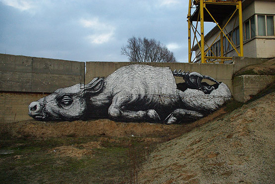 1744 in Graffiti Street Art of Animals
