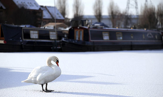 18 of 25, Attractive Snow Pictures of UK 2010