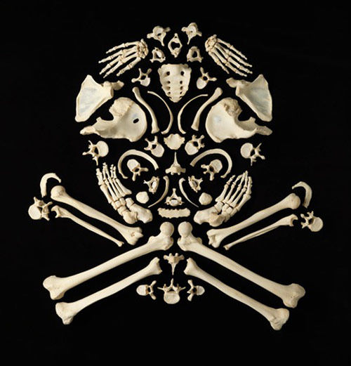 Skull and Bones in Stop the Violence