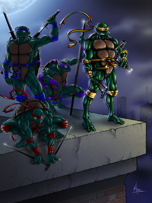 Ninja Turtles in Teenage Mutant Ninja Turtles (TMNT) Artworks