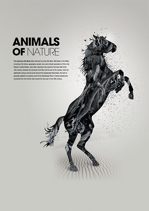 Animals of Nature 1