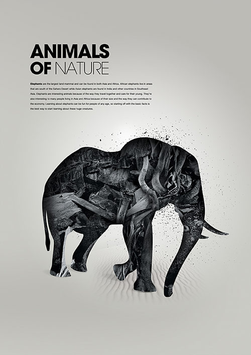 Animals of Nature 2