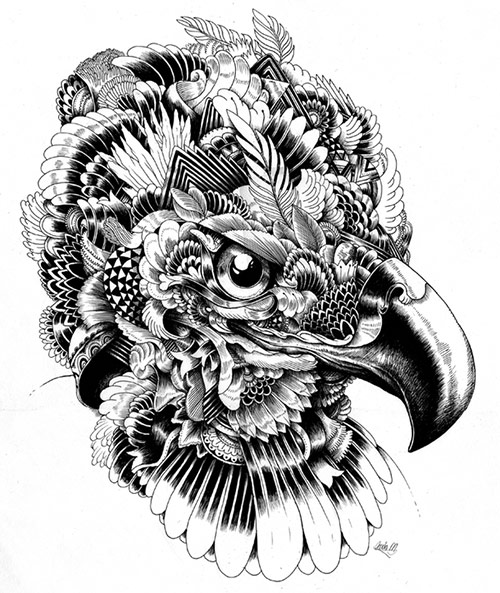05 AnimalDrawing in Incredibly Amazing Animal Illustrations by Iain Macarthur