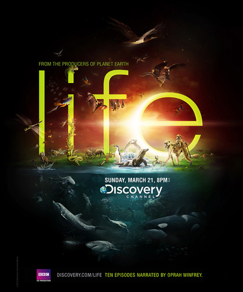 Discovery Channel - Life by Peter Jaworowski