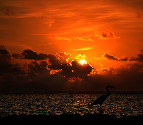 Sun Photo 32 in Beauty of Sun Photography With 30+ Amazing Sunset Pictures