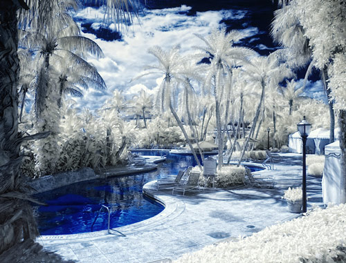 infrared winter wonderland 1