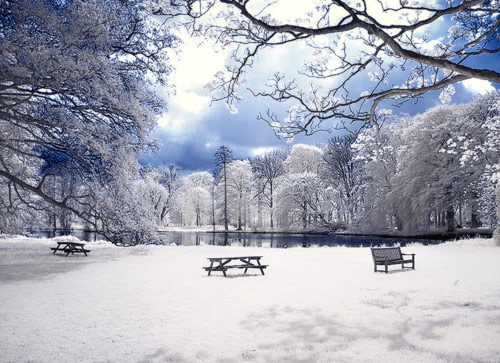 infrared winter wonderland 03