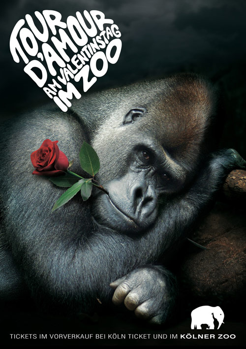 Valentines Day - Creative Advertisements Using Animals
