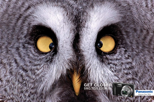 Get Closer - Creative Advertisements Using Animals
