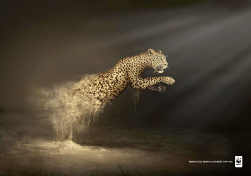 Desertification Destroys - Creative Advertisements Using Animals