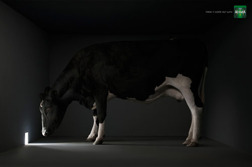 Make It Come Out With Activia - Creative Advertisements Using Animals
