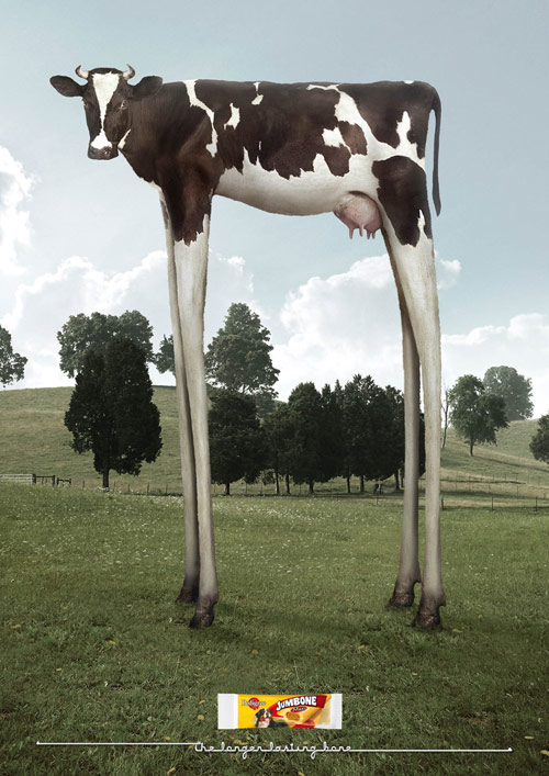 The Longer Lasting Bone - Creative Advertisements Using Animals