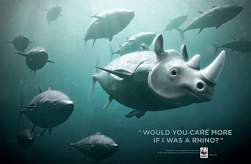 Would You Care More If I Was A Rhino - Creative Advertisements Using Animals