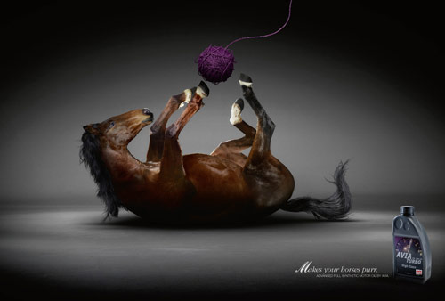 Makes Your Horses Purr - Creative Advertisements Using Animals