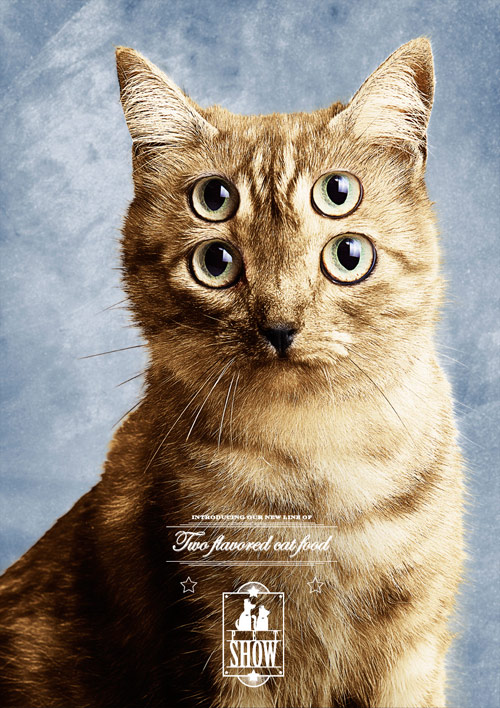 Pet Show Pet Food: Cat - Creative Advertisements Using Animals