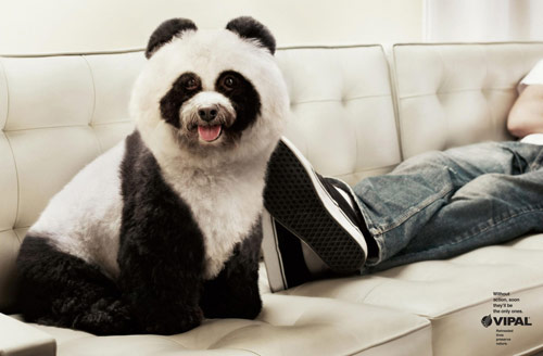 VIPAL Environmental Awareness: Panda - Creative Advertisements Using Animals