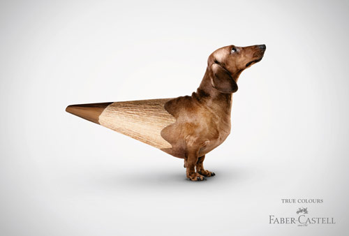 True Colours - Creative Advertisements Using Animals