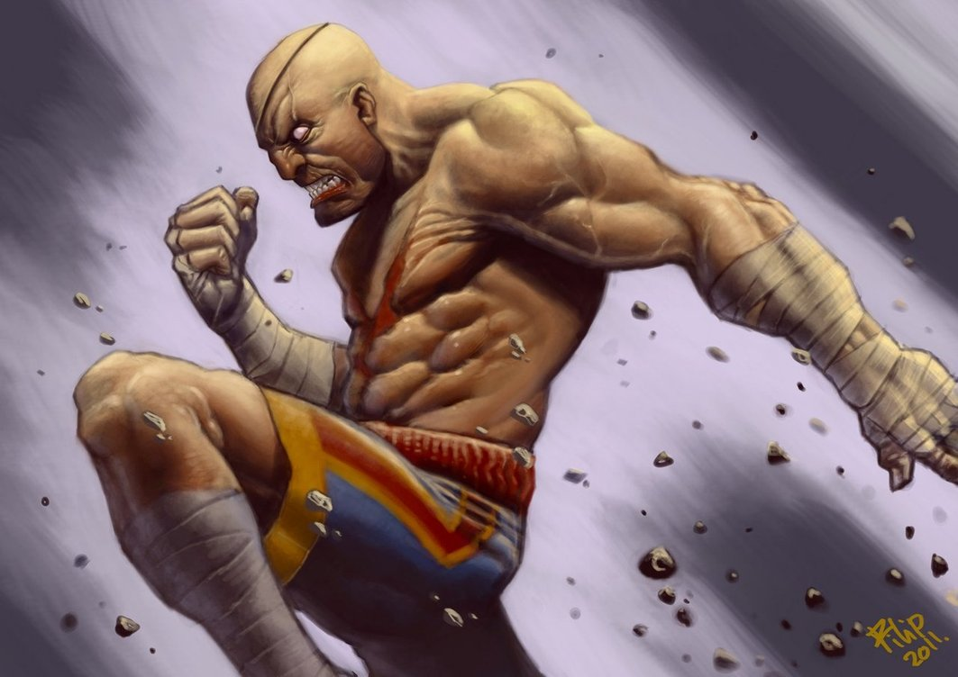 Sagat - Gorgeous Digital Paintings