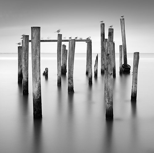 blackandwhitephoto2 in Black and White Photography by Lance Ramoth