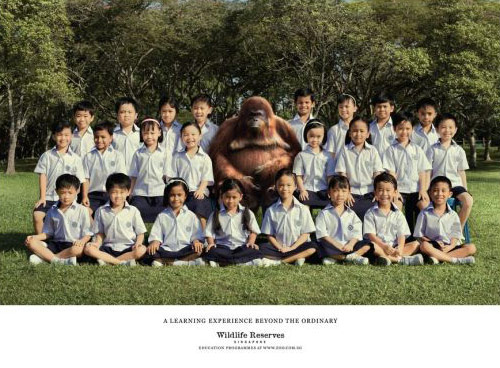 Wildlife Reserves Singapore: Teacher