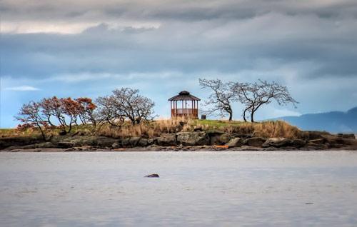 Gossip Island Gazebo