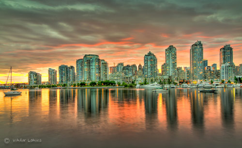 False Creek Dream