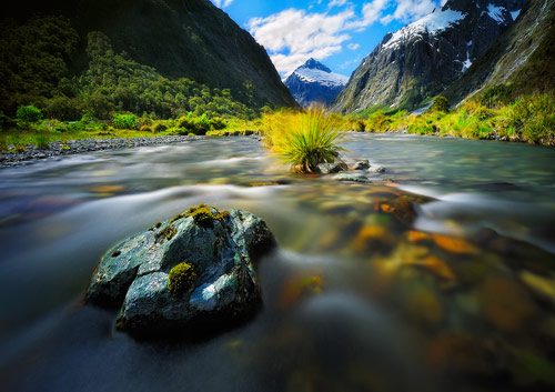 Dreamy creek @ Milford Sound