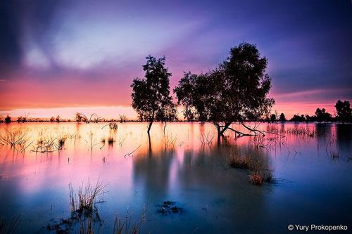 Australia - Outback - Lake Pamamaroo