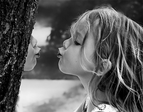 Kiss from a Tree by Linda Palm van Meel