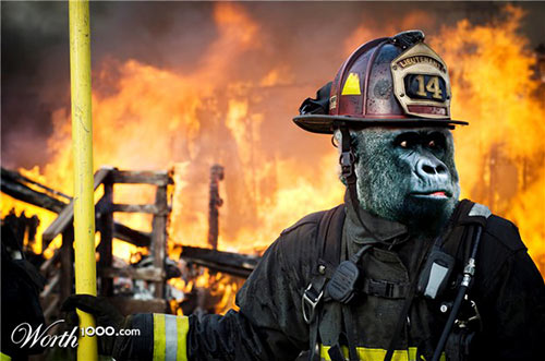 Gorilla Firefighting