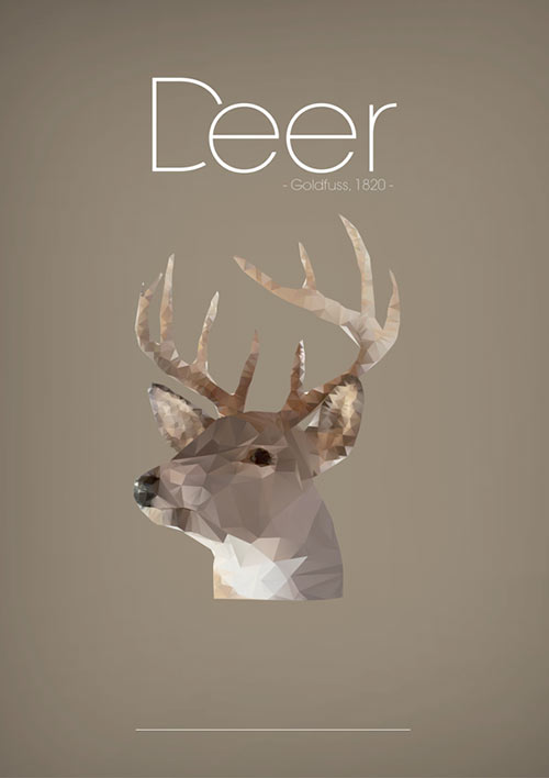 poly deer