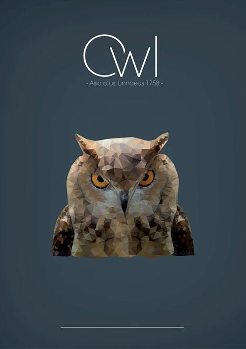 poly owl