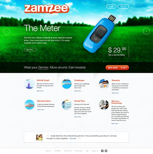 MA custom homepage design for Zamzee