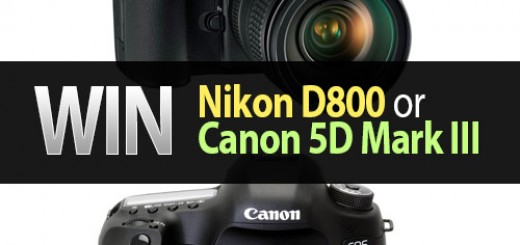 win nikon d800 or canon 5d mark iii