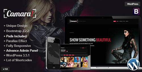 Camara - Parallax WordPress One Page Theme