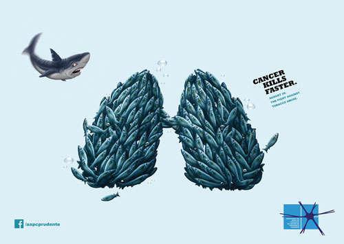 AAPC: Shark